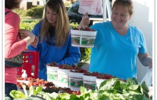 Ninth Holly Springs Farmers Market Season Begins May 2