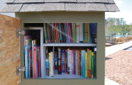 Catch the Little Free Library Fever!